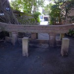 鹿児島旅行なら桜島!埋没鳥居が埋まりすぎです