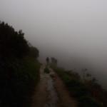 【スペイン巡礼25日目】幻想的な霧の中を進む。標高1300m超えの山登り