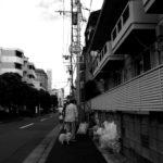 【写真日記51】選択