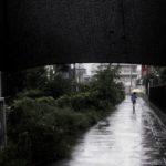 【写真日記84】雨は悪者か