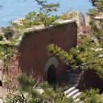 和歌山の無人島「友ヶ島」にトモガシカを見に行く旅