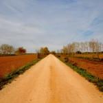 【スペイン巡礼16日目】ひたすら地平線を追いかける直線路。頭の道。