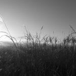 風景論の著者港千尋氏の講義「場所」と「非場所」について考える。