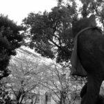 【写真日記191】春がきた。